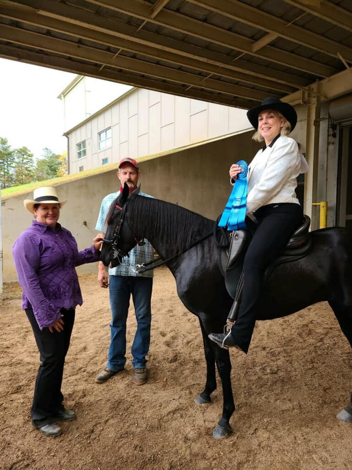 east-west-veterinary-equine-clients-004