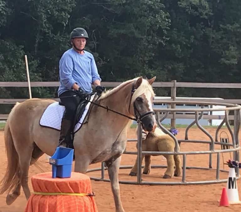 east-west-veterinary-equine-clients-013